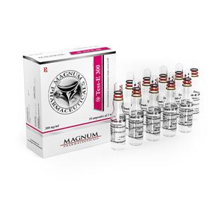 Kaufen Sie Testosteron Enanthate: Magnum Test-E 300 Preis